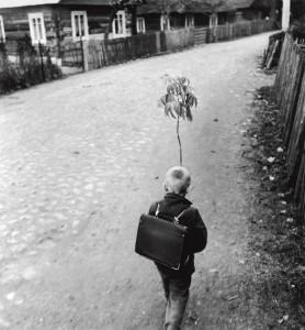 Kaimo gatve. Vaikyste. Dzukija, 1969